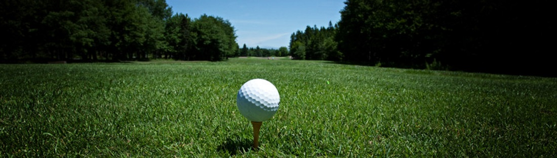 Golf Ball [New Brunswick Tourism [CC BY 2.0 (https://creativecommons.org/licenses/by/2.0)], via Wikimedia Commons]
