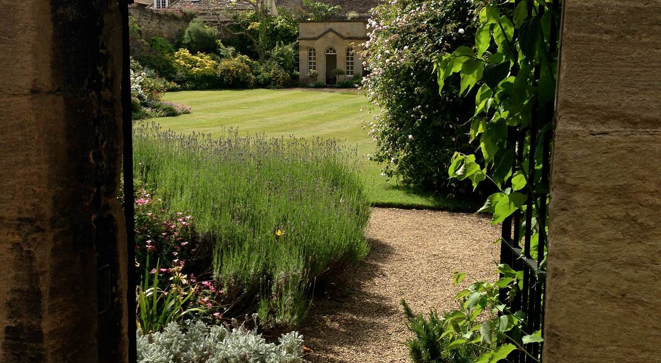 Image result for warden's gardens new college